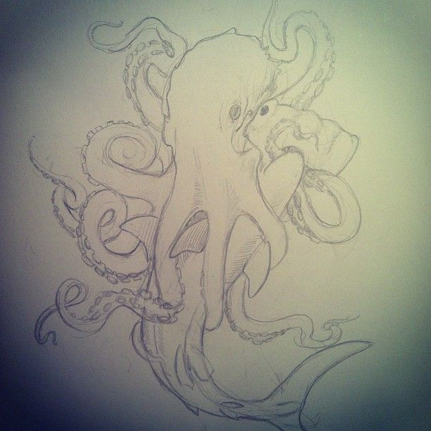 Eye to eye! I found this old sketch looking through one of my old sketch books #nautical #shark #octopus