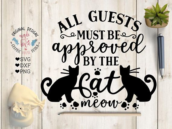 All Quests must be approved by cat SVG dxf png Cat svg