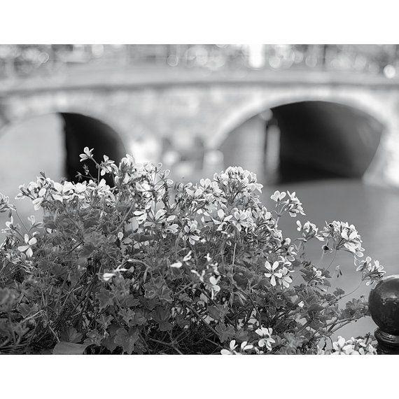 """Flowers Along an Amsterdam Canal"""