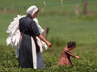 Best 41 Lancaster Pa Amish Images On Pinterest Photography