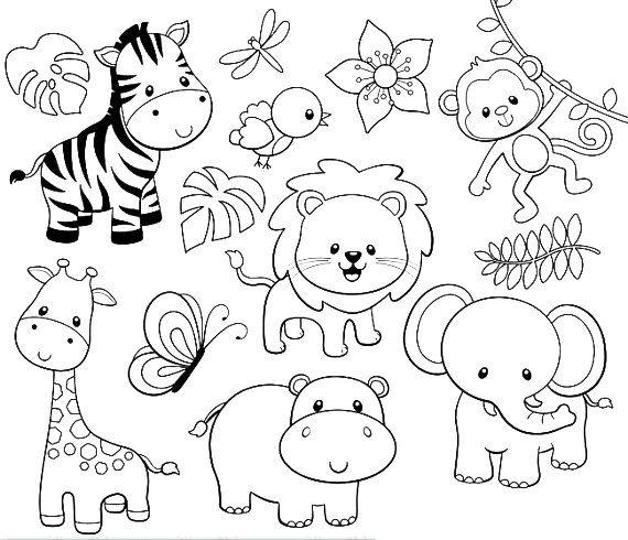 Animales Terrestres Dibujo Jerusalem House