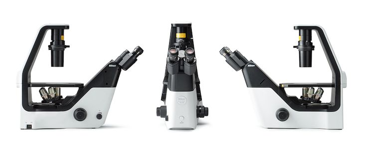 Inverted Microscope [ECLIPSE Ts2/Ts2R]