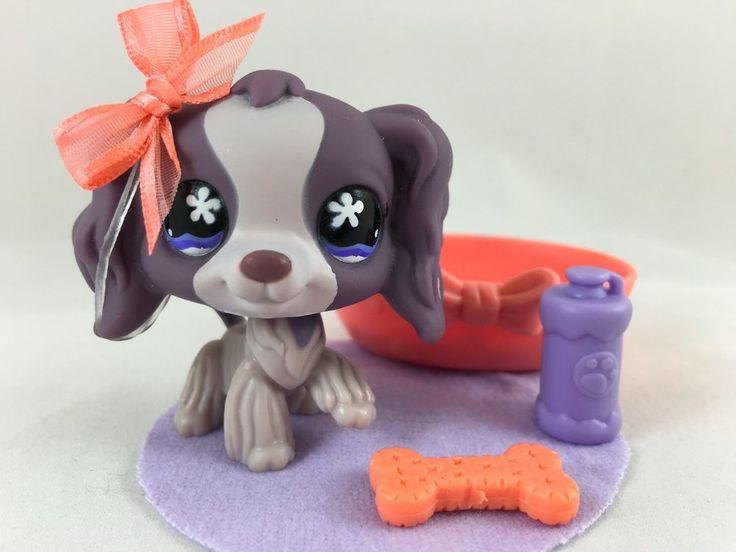 Littlest Pet Shop RARE Purple Cocker Spaniel #672 w/Bed & Accessories #Hasbro