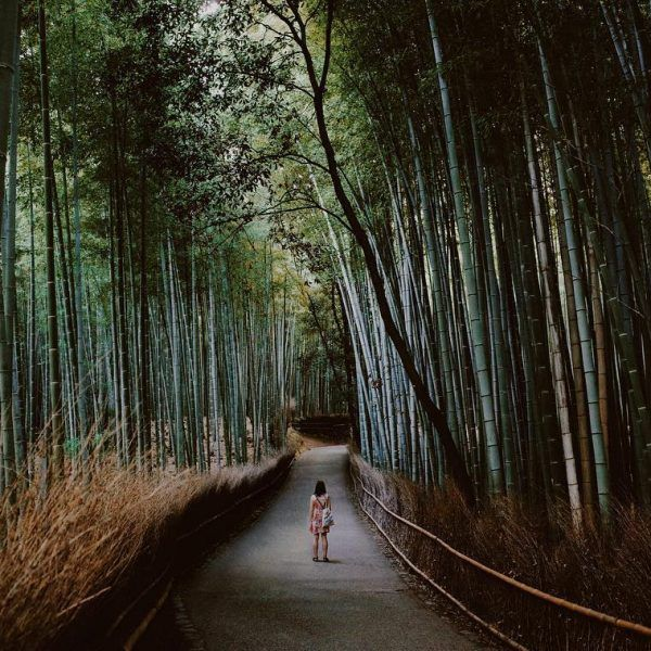 Kyoto, Japan - According to The Pinterest 100, Kyoto is going to be the hottest destination of 2017. This is good news for introverts, who are likely to feel more comfortable in Japan than they do in their own stateside, as it's a quieter culture. Check out our guide to Tokyo, and see below for our Kyoto recs.What To Eat: Kinmata, for a traditional kaiseki meal.Where To Stay: The Hoshinoya Resort, accessible only by boat.What To See: Lose yourself in the breathtaking sites of the Sagano…