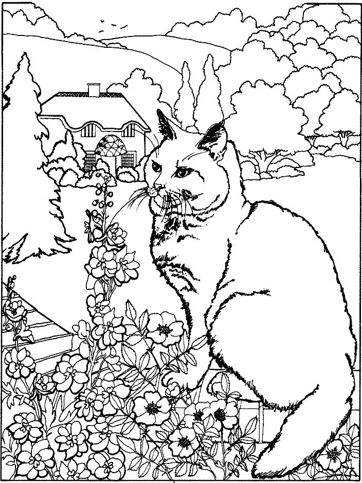 coloring sheets coloring pages coloring books colouring kittens doodles pencil flowers children - Dragon Coloring Pages For Adults