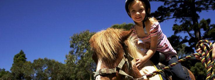 Pony Rides in Centennial Parklands