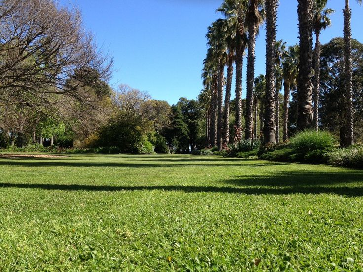 As the weather warms up the green lawns of the Williamstown Botanic Garden are looking very inviting!