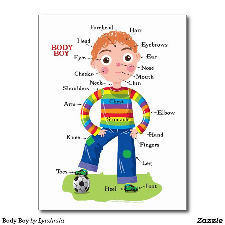 Body Boy Postcard