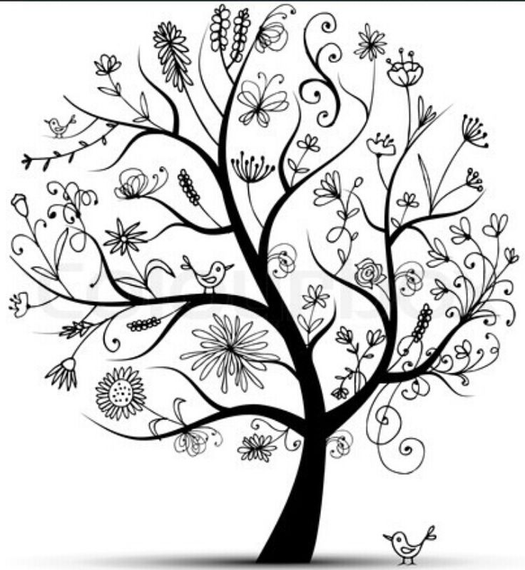 Tree Of Life Ideal Size Of A 48: 27 Best Template Images On Pinterest
