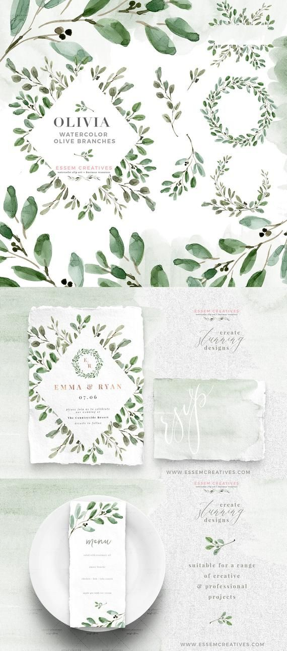 Watercolor Olive Branch Clipart Olive Leaves Clipart Wreath