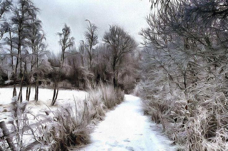 Frozen Path. Holmlia, Oslo, Norway.
