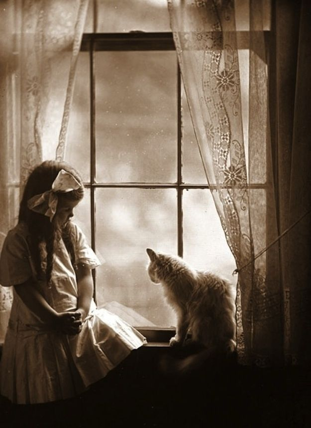 vintage everyday: Vintage Photographs of Girls with Their Cats