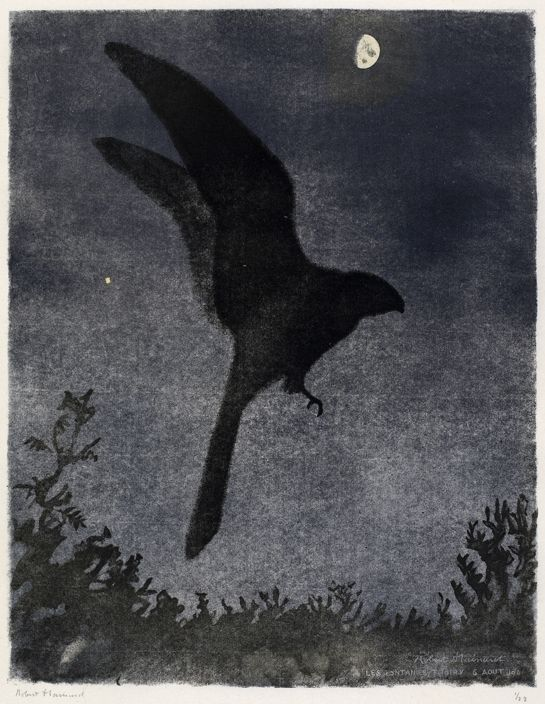 Engoulevent , Robert HAINARD Oiseaux Oiseaux Gravure sur bois N° 151 Observation 6.8.1946, Les Fontanies, Thoiry Nightjar bird