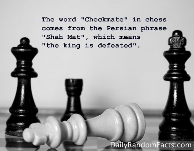 What do they call a game of chess?
