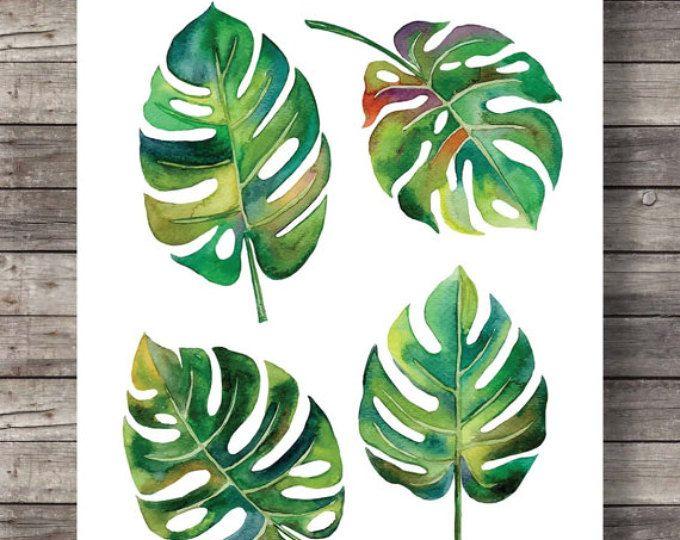 Watercolor Monstera leaves, Printable art,  Fruit salad plant, swiss cheese plant, tropical leaf, botanical, illustration,  greenery print