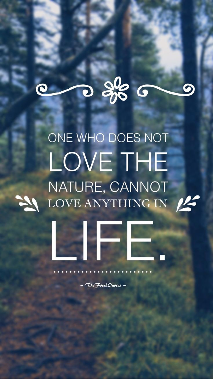 Earth Quotes Glamorous 7 Best Trees Images On Pinterest  Slogans On Save Trees Planet . Review
