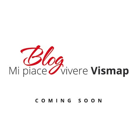 New Blog Vismap
