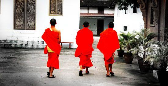 Ständig gibt es neue Studien über die Vorteile des regelmäßigen Genusses von grünem Tee. Sie belegen auf wissenschaftliche Art, was Japaner und Chinesen schon seit Jahrhunderten intuitiv 'wussten': Tee ist ein Getränk mit vielen Tugenden. Sowohl in Bezug auf die Gesundheit als auf das Wohlbefinden und sogar die Spiritualität. Anfangs war der grüne Tee das Getränk der Mönche. Er wurde in Klostergärten angebaut und diente zur Stärkung der Gesundheit und unterstütze die Meditation der Mönche.
