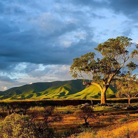 Flinders Ranges, South Australia More