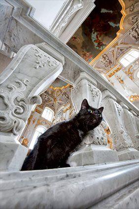Hermitage Museum (Государственный Эрмитаж)