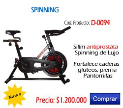 Bici Spinning de Lujo Tipo Schwinn referencia D-0094