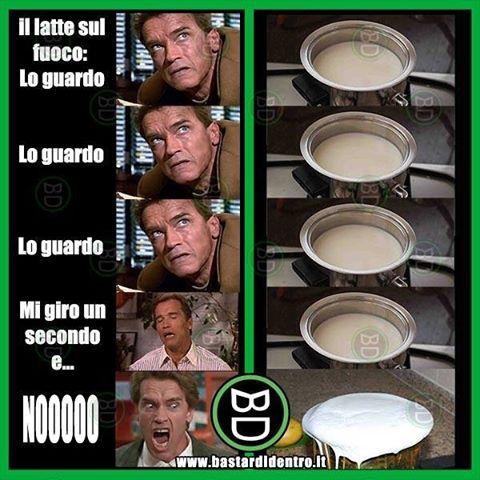 La regola del #latte non ammette eccezioni: va guardato fisso per sempre! #bastardidentro #tagga i tuoi amici e… www.bastardidentro.it