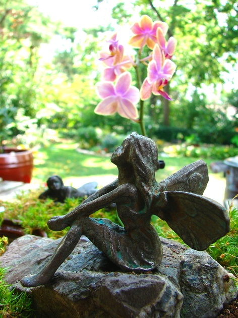 Story: Do you believe in magic? Then you'll love a fairy garden.: Fairies Garden