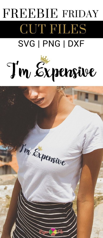 I'm Expensive Free SVG File Free svg, Cricut projects vinyl