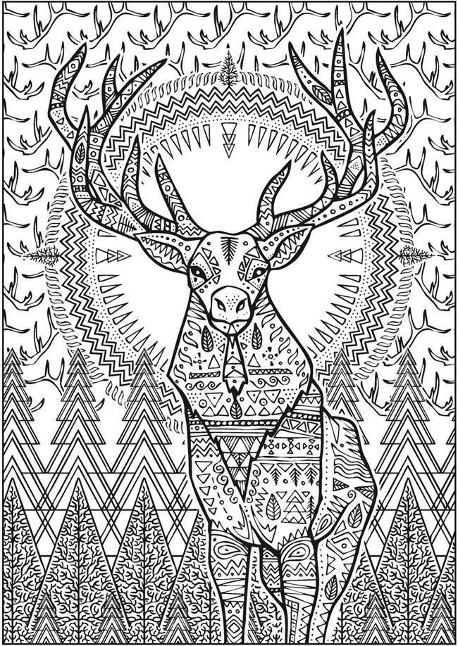 Creative Haven Untamed Designs Coloring Book | Designs ...