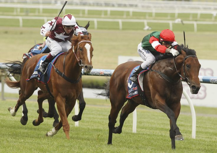 Petrology takes out the Sandown Guineas.