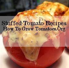 http://howtogrowtomatoes.org/simple-tomato-recipes/  Stuffed Tomato recipes  Click the link for instructions.