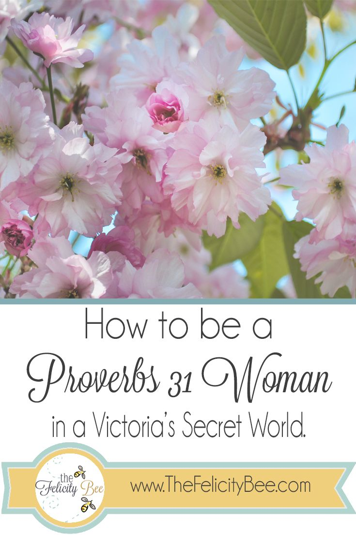 Do you feel like you don't fit in with our cultures definition of women? We see the media telling us who we should be and we just don't fit that mold. That is because we were born to stand out. Read on to see how you can be a Proverbs 31 Woman in a Victoria's Secret world!