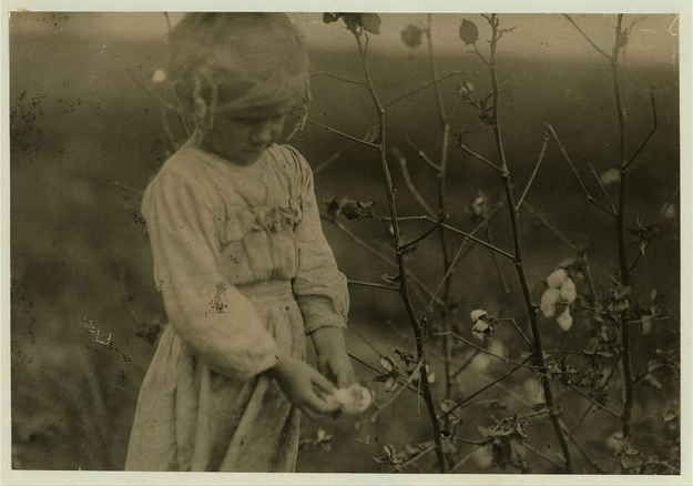 Date: October 1913  Location: Houston [vicinity], Texas  Millie, a 4-year-old cotton picker, on farm near Houston. She picked about eight pounds of cotton a day.