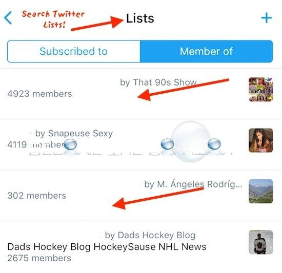 Easy: How to Search Twitter Lists
