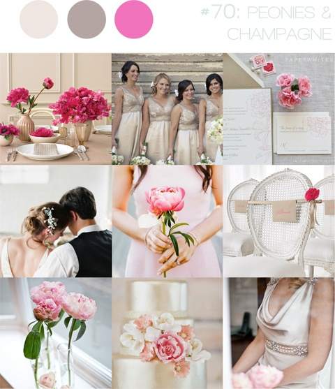 peonies & champagne ~ pink, taupe & gold ~ pretty, contemporary & feminine inspiration