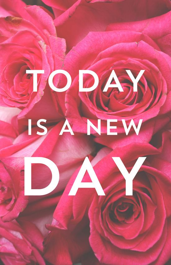 Today is a new day https://society6.com/product/today-is-a-new-day-roses-photograph_print?curator=themotivatedtype