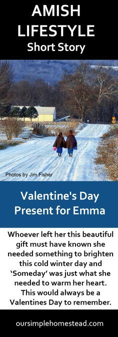 Amish Lifestyle Short Story - Someday - Whoever left her this beautiful gift must have known she needed something to brighten this cold winter day and 'Someday' was just what she needed to warm her heart. This would always be a Valentines Day to remember.