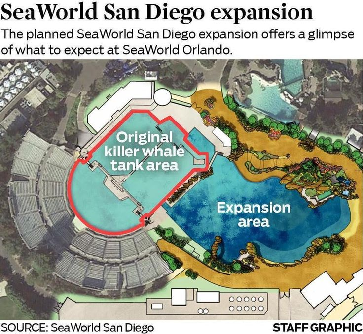 """Sea World Stock Price Plummets, San Diego to Double Size of Tanks  Sponsored By: DPL-Surveillance-Equipment.com Open 24/7/365! (888) 344-3742 or (818) 344-3742 (Spy Store)  Life-Time Warranties!   Discount Coupon: """"DPL"""" Get 5% Off!!! For Non-Bitcoin Purchases Use Bitcoins To Buy, Rent or Layaway Nanny IP (Internet) Cameras, GPS Trackers, Bug Detectors and Listening Devices, etc."""