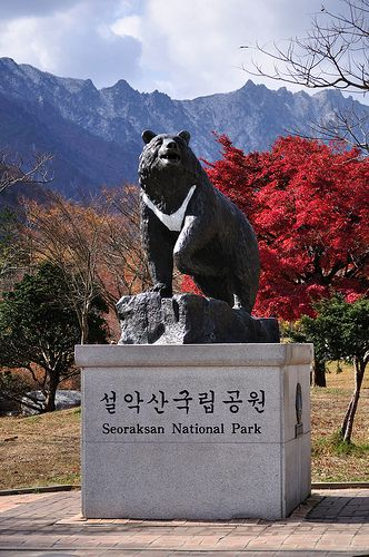 The Moon Bear Statue in Seorak National Park, Korea