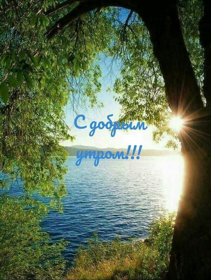 С добрым утром православные картинки с природой и орлом