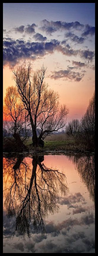 SUNSET REFLECTION #photo by Gábor Ősz #sun sunrise sky clouds tree water sea lake reflections landscape amazing nature red orange