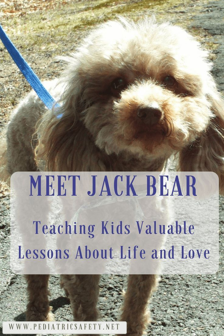 Teachable Moments: Valuable Lessons on Life and Love for Kids - Pediatric Safety  Meet Jack Bear. For such a little guy he offered many opportunities to teach our kids very valuable lessons about life and about love. Here is some of his story...