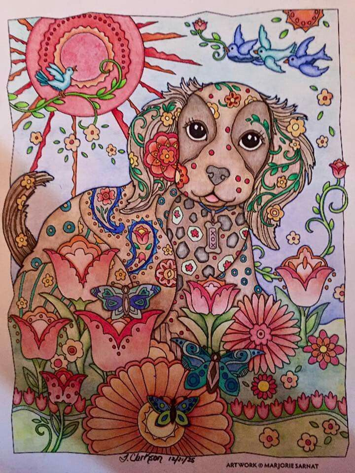 Adult Coloring Pages Books Colouring Techniques Dog Art Work Owls Ideas Colour Book
