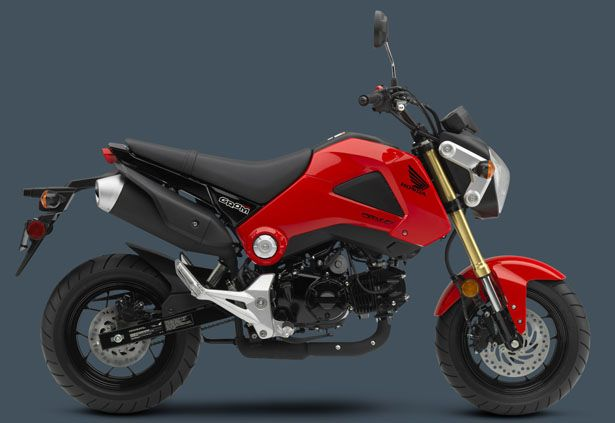 Honda Groom Motorcycle - Small Package, Big Attitude