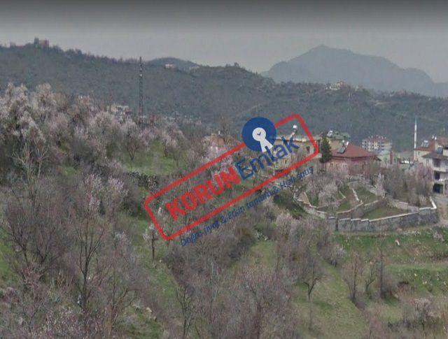 Hacılar Satılık Arsa Bağ Toplam 5.000 m² İmarlı Uygun Fiyatlı