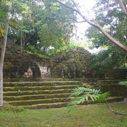 Parque Nacional de Tikal. Civilização Maia. A reserva foi habitada desde o século 6º aC até o 10º dC. Inclui palácios, templos, praças públicas. Departamento de El Petén, Guatemala. Patrimônio Mundial da Humanidade/UNESCO.  Fotografia:  ©Silvan Rehfeld.