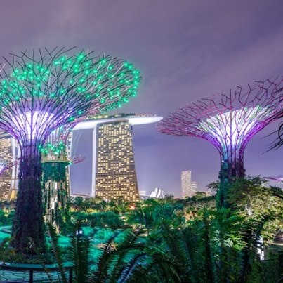 Garden By The Bay Deal 28 best gardensthe bay, singapore images on pinterest