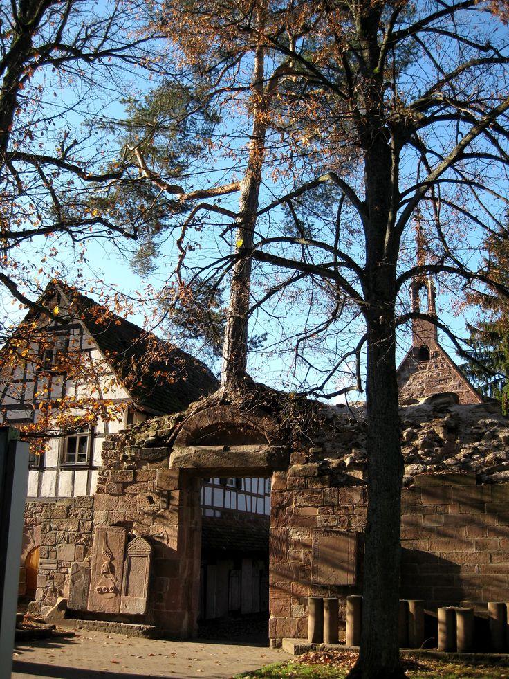 """Klosterkiefer in Bad Herrenalb (Baum und Tor als archetypische Symbole. Auch die Polarität """"männlich - weiblich"""" wird symbolisiert.)"""