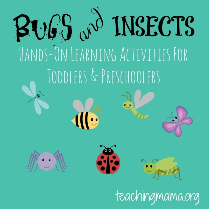 Fly Mask Craft for Preschoolers | Preschool/Elementary ...