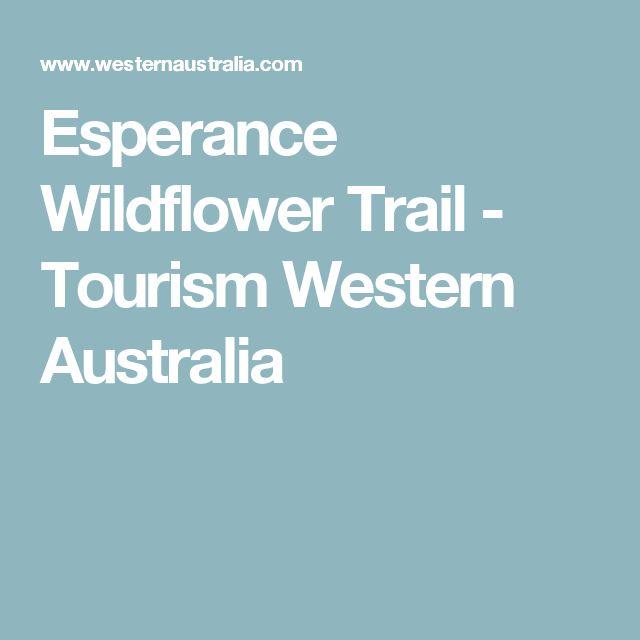 Esperance Wildflower Trail - Tourism Western Australia